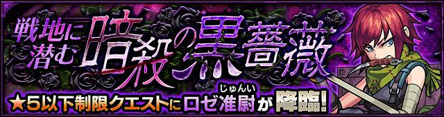 戦地に潜む暗殺の黒薔薇 ロゼ准尉(星5制限)
