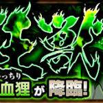 かちかち山が生みし狂獣/渇血狸(究極)