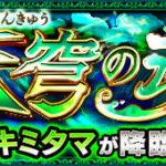 幸を願うは天穹の魂/サキミタマ(爆絶)