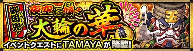 御目見!夜空に傾く大輪の華/TAMAYA